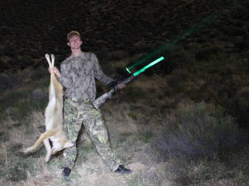 coyote hog predator hunting light green led gun scope light 250. Black Bedroom Furniture Sets. Home Design Ideas
